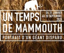 Exposition Mammouth - Musée Archéa Louvres